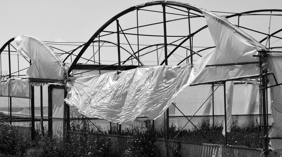 Hur skyddar jag min polytunnel från vind
